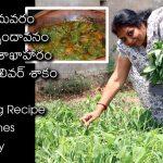 Totakura Liver Curry / Amaranths Veg Liver Curry / Indian Vegetarian Recipes /Telugu Special Curries