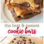 Chocolate Chip Cookie Bars – a Family-Favorite (+VIDEO) | Lil' Luna