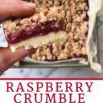 Raspberry Crumble Bars | healthyGFfamily.com
