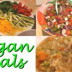 Vegan Meals & Queer Queries