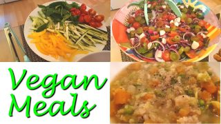 Vegan Meals & Queer Queries