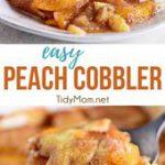 This tried-and-true Peach Cobbler recipe is easier than pie! Use fresh or frozen…