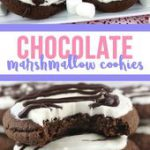 Springtime Chocolate Cookies