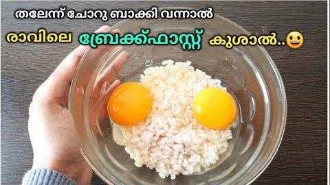 ✔️2 മിനുട്ടിൽ സൂപ്പർ ബ്രേക്ക്ഫാസ്റ്റ് ഉണ്ടാക്കാം || Instant Breakfast Recipes||Leftover Rice Recipes