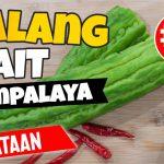 Walang Pait Ampalaya Ginataan | Budget Recipe #3