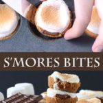 S'mores Bites
