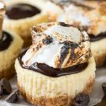 This easy recipe makes a perfect 12Mini S'mores Cheesecakes! This is the p…