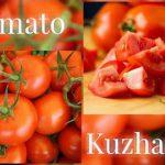 Mother's Day Wishes and Takkarana Tomato Kuzhambu | டக்கரான தக்காளி குழம்பு – Recipe