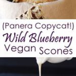Vegan Wild Blueberry Scones Recipe (Panera Copycat!) – dairy-free, egg-free, sev…