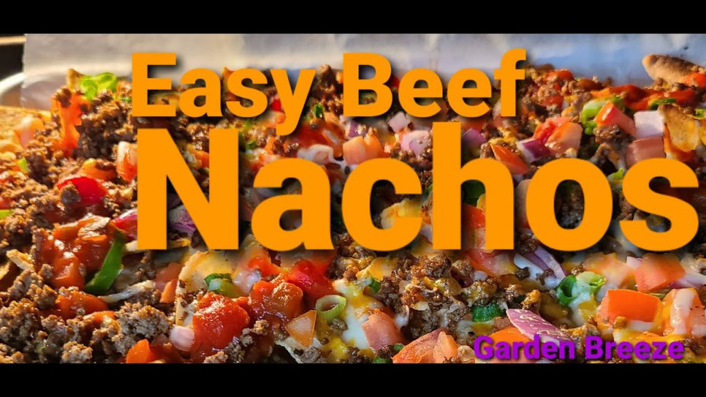 Easy Beef NACHOS Recipe | Tomato | Onion | Jalapeno | Cheese | Salsa | #shorts #shortfired